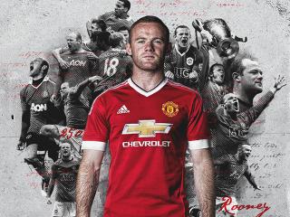 Rooney 250